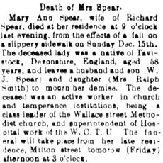 Nanaimo Daily News, December 26, 1895, page 1, column 6.