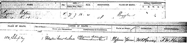 Ancestry.com. California, County Birth, Marriage, and Death Records, 1849-1980 [database on-line]. Lehi, UT, USA: Ancestry.com Operations, Inc., 2017. Name: Ellen Nias; Gender: Female; Race: White; Death Age: 71; Event Type: Death; Birth Date: abt 1829; Birth Place: England; Death Date: 1 Jun 1900; Death Place: 182 Shipley.