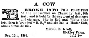 Victoria Daily Colonist, December 25, 1868, page 1, column 5; https://archive.org/stream/dailycolonist18681225uvic/18681225#page/n0/mode/1up.