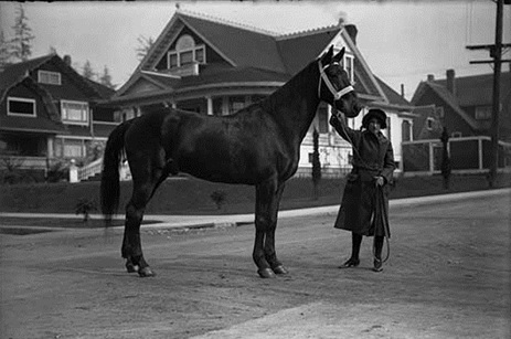 Mrs. W. S. Holland and Credential in the West End [possibly about 1921]; Vancouver Public Library, VPL Accession Number: 15064; http://www3.vpl.ca/spePhotos/LeonardFrankCollection/02DisplayJPGs/2096/15064.jpg. At the intersection of Comox Street and Chilco Street, looking northwest. The houses in the background are 2033 Comox Street, 2005 Comox Street and 2000 Nelson Street. This photograph also appears in the Vancouver Sun, April 10, 1921, page 24: https://news.google.com/newspapers?id=iidlAAAAIBAJ&sjid=kYgNAAAAIBAJ&pg=3271%2C4065891.