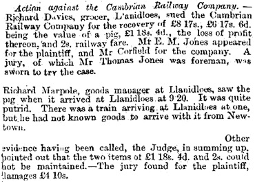 The Cambrian News and Merionethshire Standard, June 9, 1871, page 9, column 3 [selected portions].